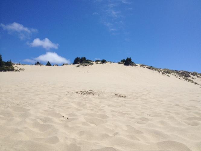 Sand_dune_hill.JPG